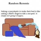 random-remmie-make-bed