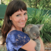 2015 Reflections & Dreams for 2016 – Homer Simpson, Koalas and Marathons, Oh My!