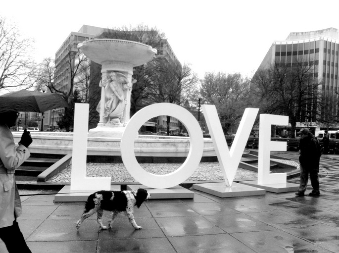 love dupont circle Heartbeats: Finding Mine Again