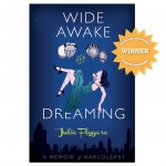 wide awake and dreaming san fran book festival winner 2013
