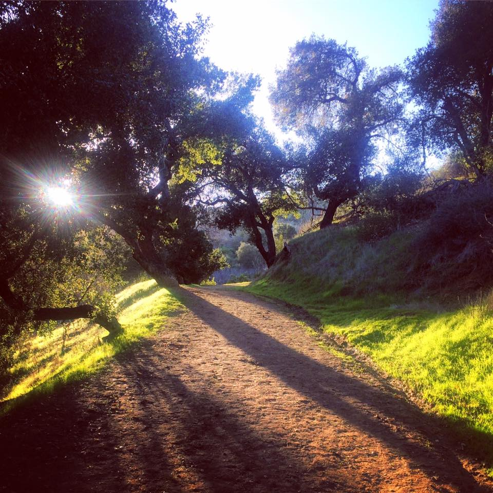 griffith-park-trail-julie-flygare-narcolepsy-runner